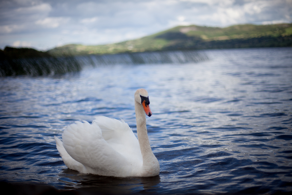 Lough Derg July 2015-18